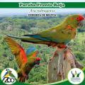 Zoológico municipal - Fauna Sudamericana: Sabias que
