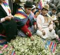 ONU admite vacío en informe de la coca