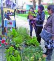 Feria de Plantas de Altura comienza mañana viernes