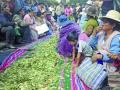 Buscan revalorizar la hoja de coca en Día del Acullicu