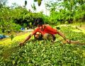 Desarrollo Rural, con más poder para ejercer control